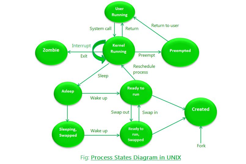 Process States in UNIX